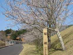 花瀬自然公園の画像