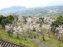 高岡公園の画像