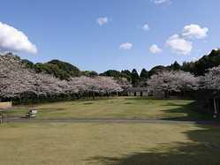 鹿児島市平川動物公園の画像