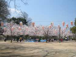 亀山公園の画像