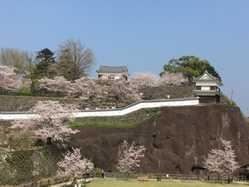 臼杵城址の画像