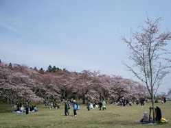 三神峯公園の画像