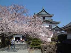 和歌山城の画像