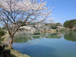 三段池公園の画像