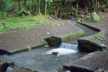 八ヶ岳南麓高原湧水群