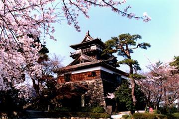 丸岡城の画像
