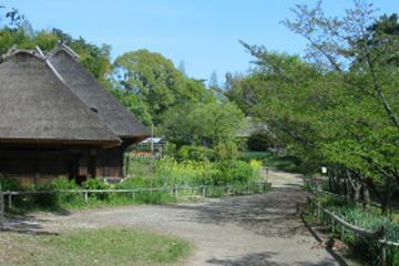 日本民家集落博物館