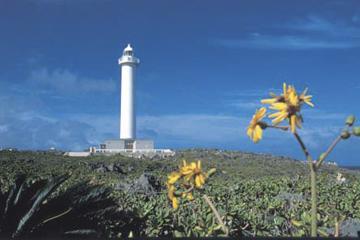 残波岬の画像