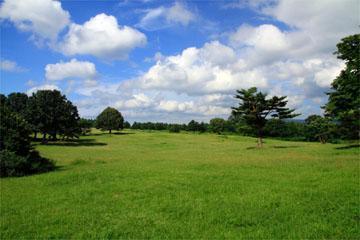 萱野高原の画像