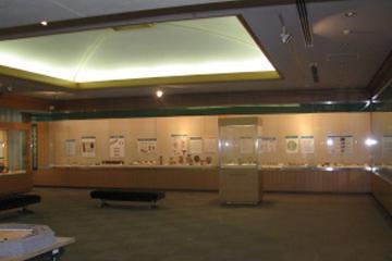 富山県埋蔵文化財センター