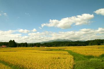 萩荘・厳美の農村部の風景