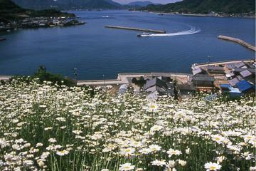 因島重井町の風景