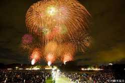 立川まつり国営昭和記念公園花火大会の画像