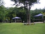 浪漫の森 オートキャンプ場の画像