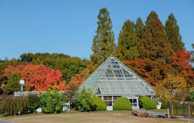 愛知県の牧場・農園・果樹園の施設検索結果