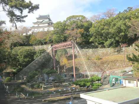 和歌山公園動物園の画像