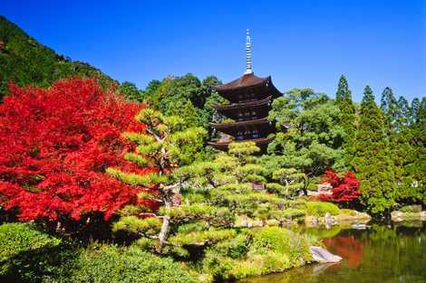 瑠璃光寺の画像