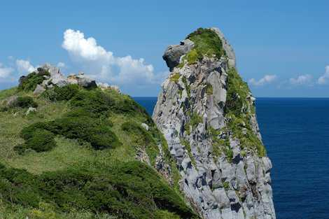 猿岩の画像