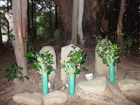 高山マリアの墓の画像