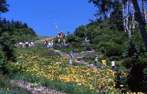 東館山高山植物園(志賀高原・飯山/植物園)の施設情報 | いつもNAVI