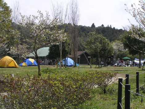 ふれあいキャンプ場の画像