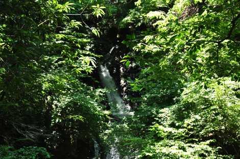 御殿滝の画像