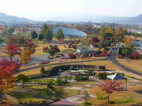 最上川ふるさと総合公園の画像