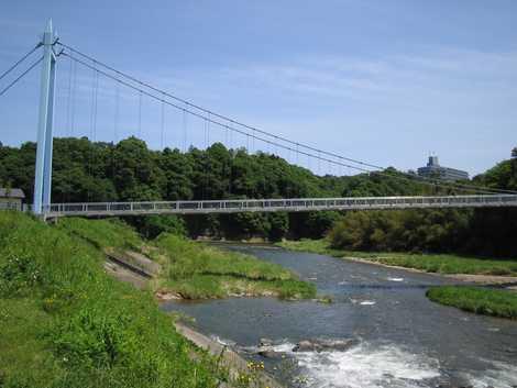 大金吊り橋の画像