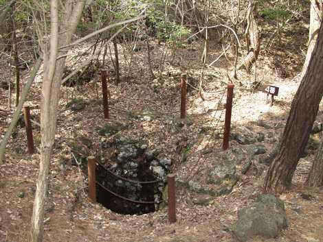鳴沢の溶岩樹型の画像