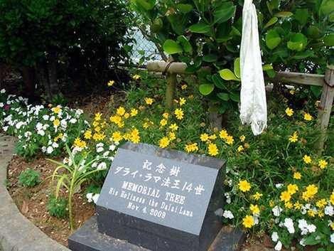 沖縄菩提樹苑の画像