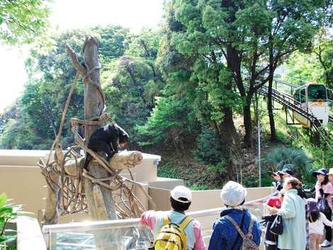 福岡市動物園の画像