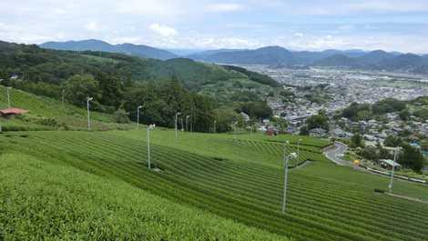 静岡県島田市金谷富士見町1700-...