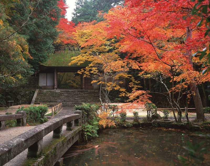 法然院の画像