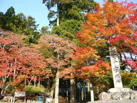 比叡山延暦寺東塔の画像