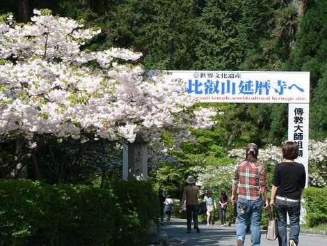 比叡山延暦寺西塔の画像