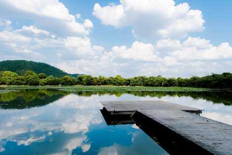 大沢池の画像