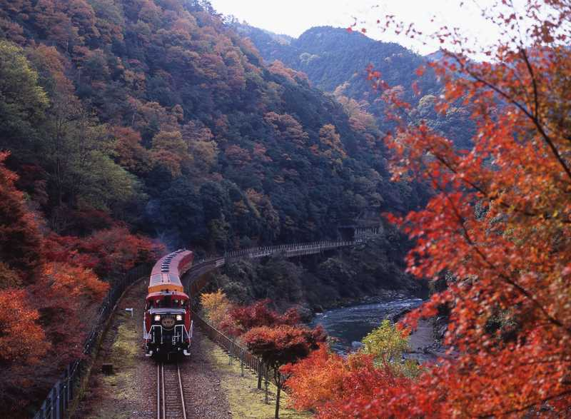 嵯峨野トロッコ列車の画像