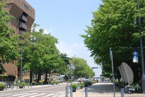 日本大通りの画像