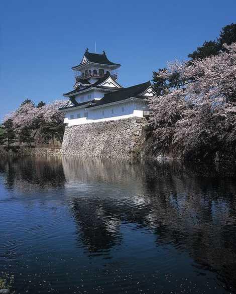 富山市郷土博物館の画像