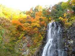 立又渓谷(幸兵衛滝)の画像