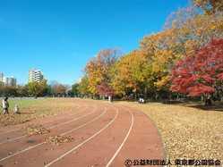 東大和南公園の画像