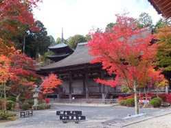 常楽寺(湖南三山)