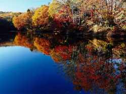 震生湖の画像