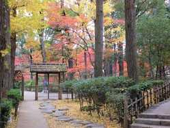 大田黒公園の画像