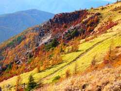 美ヶ原高原の画像