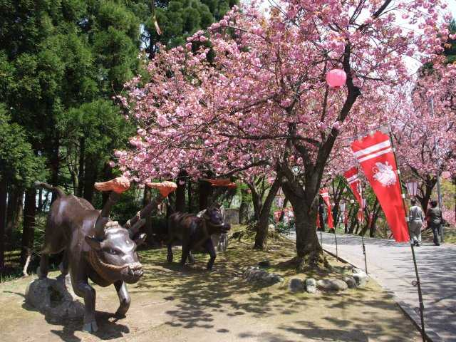 倶利伽羅県定公園