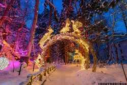 十和田湖冬物語の画像