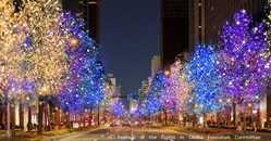 大阪・光の饗宴 「御堂筋イルミネーション」のイルミネーション