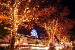 神戸ガス燈通りの画像